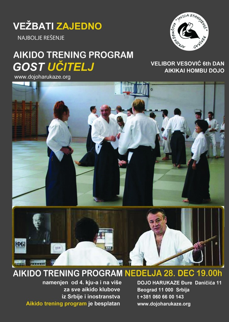 aikido trening program